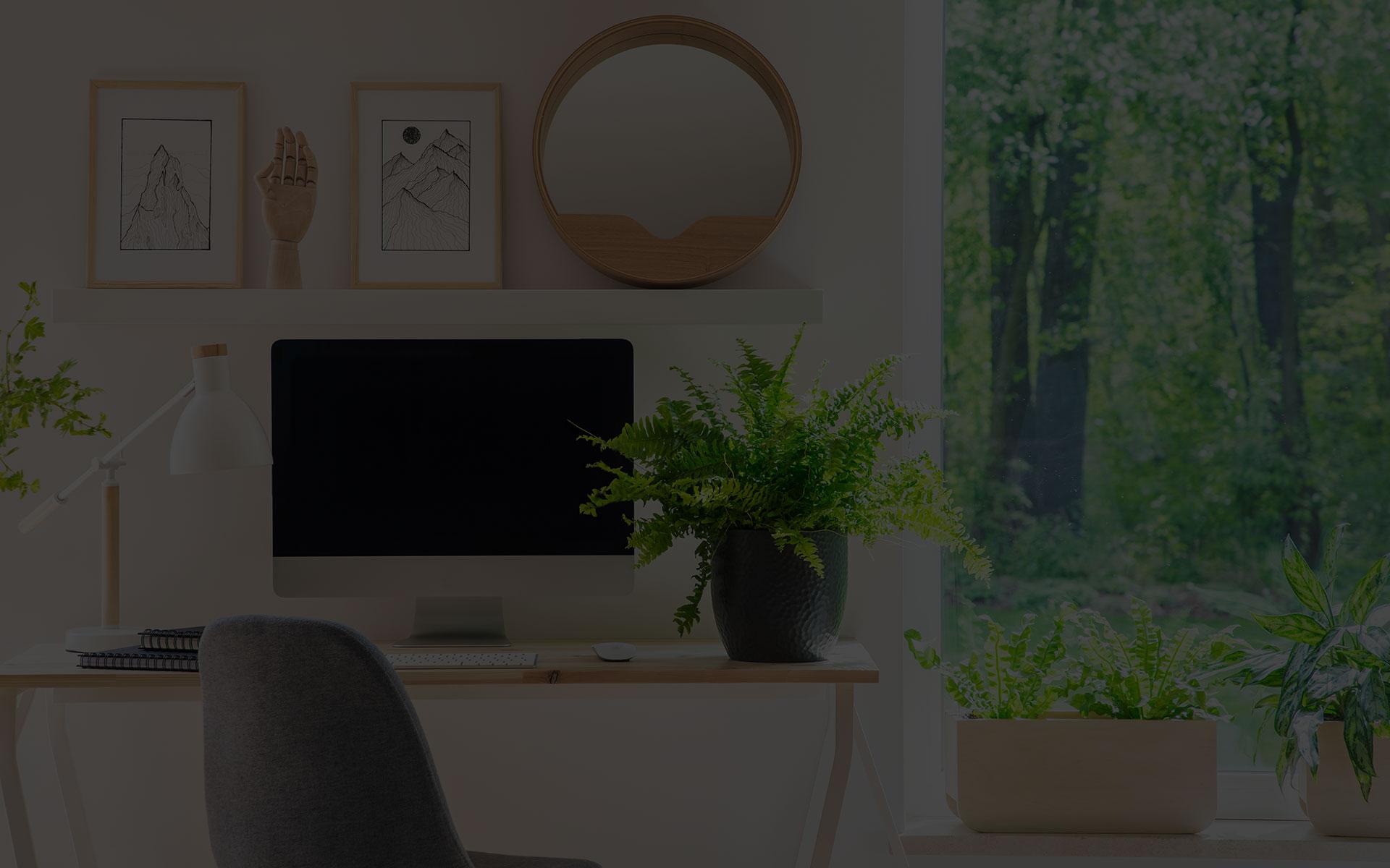 Marketingberatung, Onlinemarketing & Wissensvermittlung